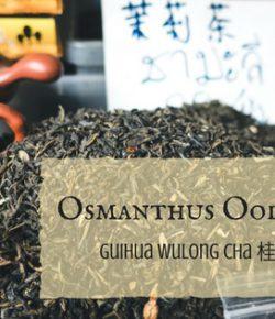 Osmanthus Oolong tea, Teacup trails stories