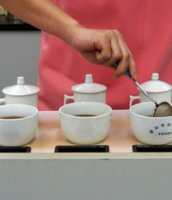 Cupping Tea – How to taste and grade Chinese teas