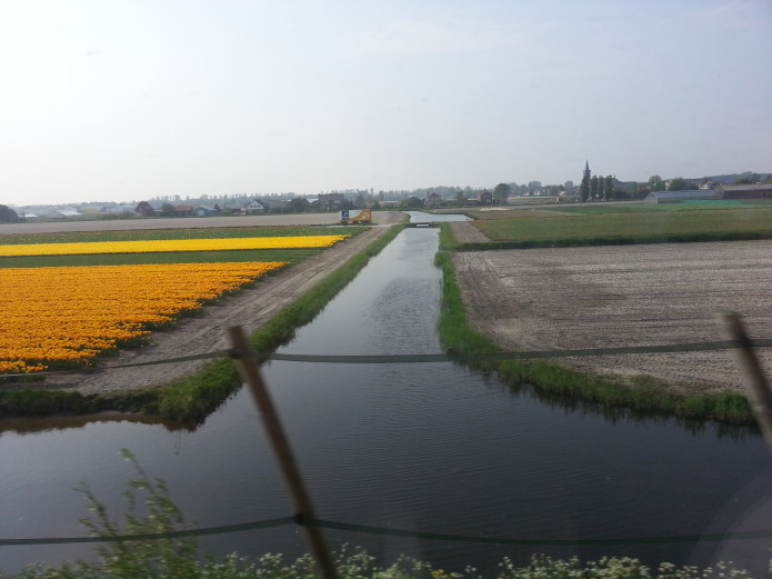water ways between flower bulb fields.jpg