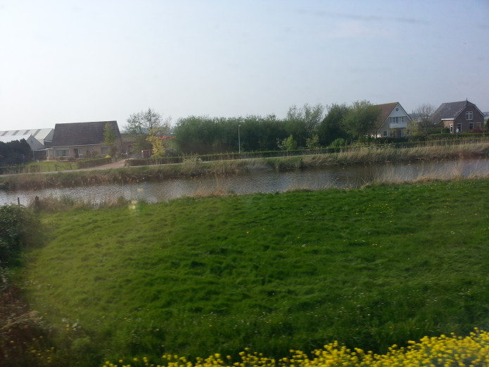Train view between the tulip bulb fields.jpg