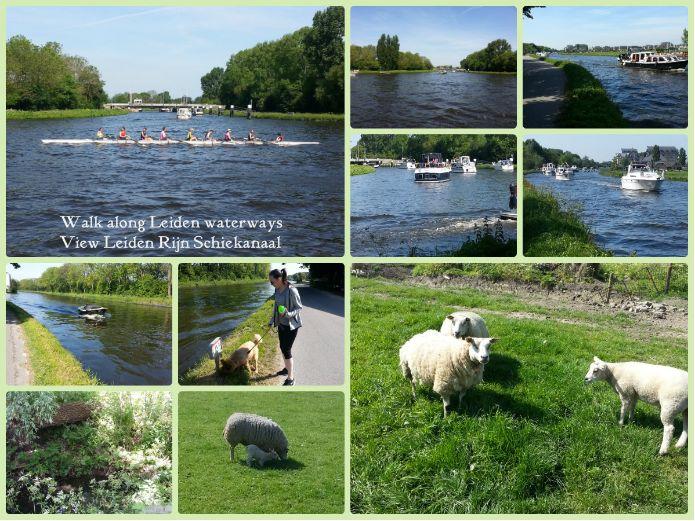 Walk along Rijn Schiekanaal - May 2014