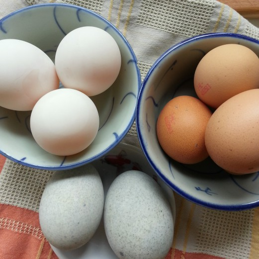 Salted Duck eggs, Chicken eggs, Preserved eggs \.jpg.jpeg