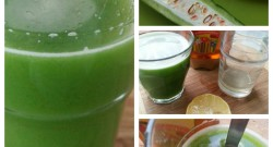 5 Best Bitter Melon Juice recipes