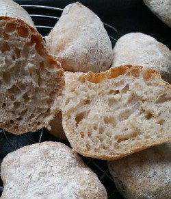Bread baking journey & starters